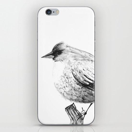 Pajaro iPhone & iPod Skin
