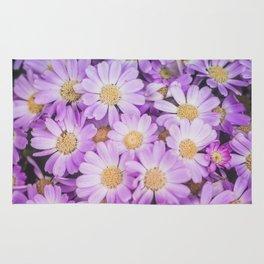 Purple daises Rug