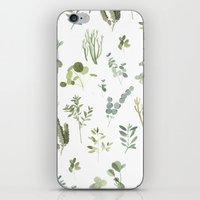 plants iPhone & iPod Skins featuring Plants  by Maggie Chiang