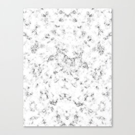 Classic marble Canvas Print