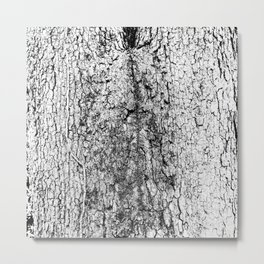 tree crotch in black and white Metal Print