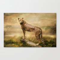 cheetah Canvas Prints featuring Cheetah by tarrby/Brian Tarr