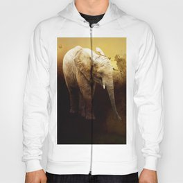The cute elephant calf Hoody