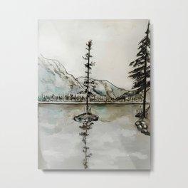 Old Pine IV Metal Print