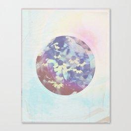 Pink Rock Canvas Print