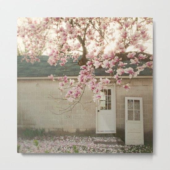 Magnolia Tree  Metal Print