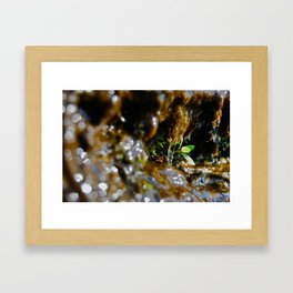 A little hope Framed Art Print