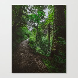 Trailblazing Canvas Print