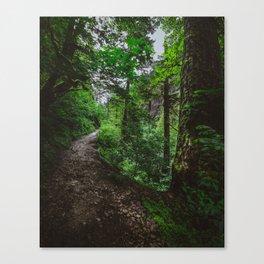 Trailblazing Canvas Print