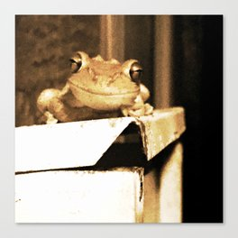 Freddy the Frog Canvas Print
