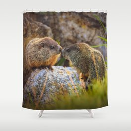 Love and Kisses II Shower Curtain
