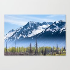 Snowy Mountains and Forest in the Fog, Alaska Canvas Print