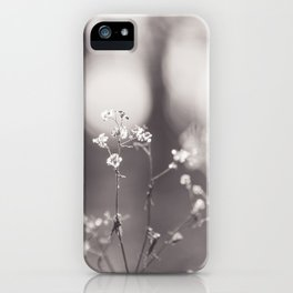 Winter Wildflowers - Nature Photography iPhone Case
