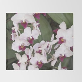 Longwood Gardens Orchid Extravaganza 1 Throw Blanket