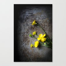 Buttercup Pick Me Up Canvas Print