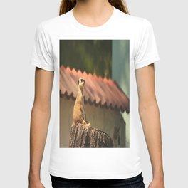 Meerkat Funny Observer #decor #society6 T-shirt