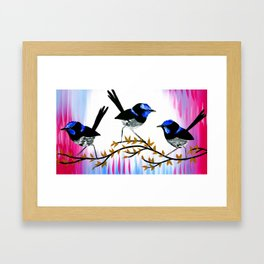 3 birds with pink and blue Framed Art Print