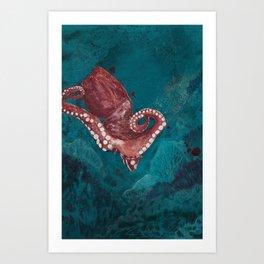 Under water world - the octopus Art Print