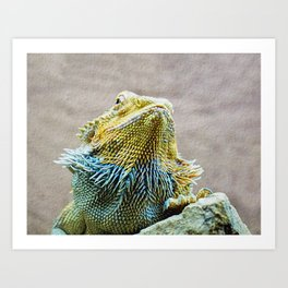 KEEPING UP APPEARANCES Art Print