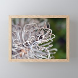 Abstract Framed Mini Art Print