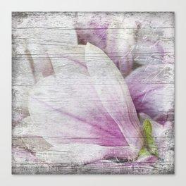 Magnolia Flower  on old wood Canvas Print