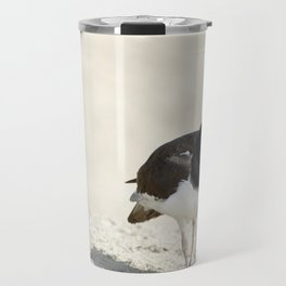 Common Oystercatcher (Haematopus palliatus) Travel Mug