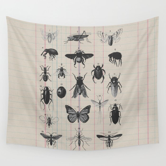 Vintage Insect Study on antique 1800's Ledger paper print Wall Tapestry