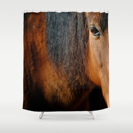 Eye to the heart Shower Curtain