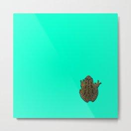 Pistachio the Tree Frog Metal Print