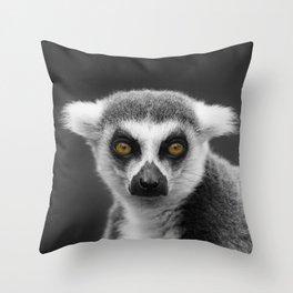 Ring-Tailed Lemur Portrait Throw Pillow