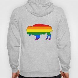 Rainbow Bison Hoody
