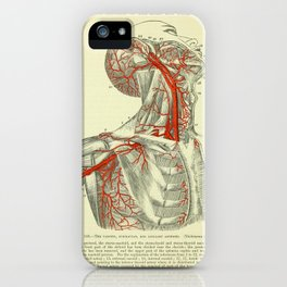 Arteries of the Upper Body iPhone Case