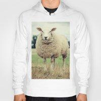 sheep Hoodies featuring Sheep by Falko Follert Art-FF77