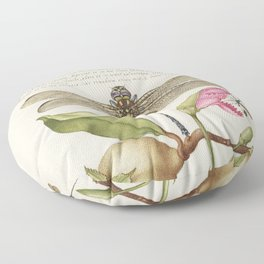Dragonfly Pear Carnation and Insect from Mira Calligraphiae Monumenta or The Model Book of Calligrap Floor Pillow