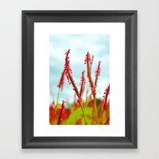 Vibrant Pink Wild Flowers Framed Art Print