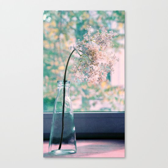 estate Canvas Print