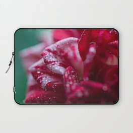Red Striped Rose Laptop Sleeve