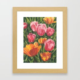 Pink and Yellow Tulips Framed Art Print