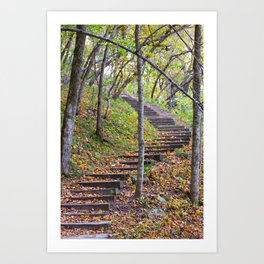 Stairway into the Woods Art Print