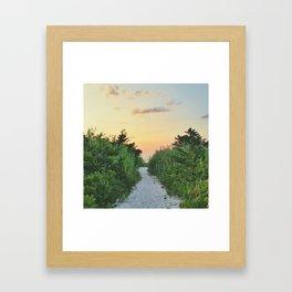 Path on Fire Island Framed Art Print