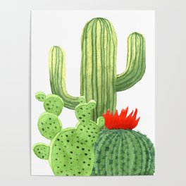 Perfect Cactus Bunch Poster