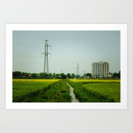 Rice Paddy in Tam Coc Art Print