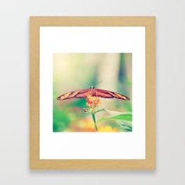 Butterfly retro Framed Art Print