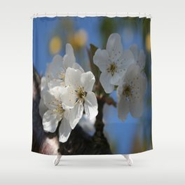 Close Up Of White Cherry Blossom Flowers Shower Curtain
