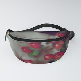 Bold Fanny Pack