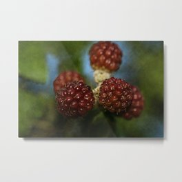 Wild berries #3 Metal Print