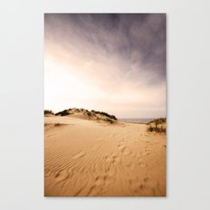 Race you to the sea! Canvas Print