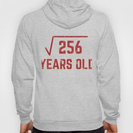 16th Birthday Gift Square Root of 256 16 Year Old Math Bday Present Hoody