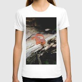 The Charismatic Newt T-shirt