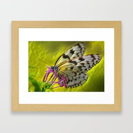 Reptile Butterfly Framed Art Print
